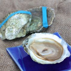 Wild Belon Oysters - Packs a punch of flavor. For the adventurous!