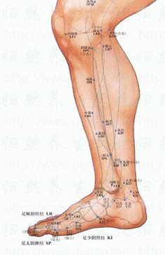 Shiatsu Massage acupressure for sore throat Acupressure Treatment, Acupressure Points, Point Acupuncture, Les Rats, Shiatsu, Chinese Medicine, Alternative Medicine, Le Point, Excercise