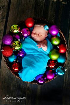 New born Christmas picture