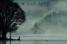 #landscape, #style, #nature, #background, #birds