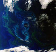 summer-bloom-from-space.jpg (1280×1197)  Envisat 衛星が2011年12月に撮影したフォークランド諸島東方の大西洋の画像。印象的な八の字型の渦は,植物プランクトンを多量に含む海水の流動を示す。古い例だがウルトラQやウルトラマンの冒頭に出てくる墨が渦を巻くような映像を連想。