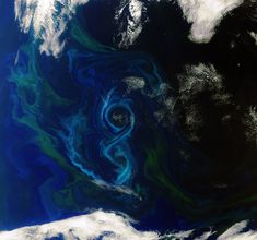 In this Envisat image, acquired on 2 December 2011, a phytoplankton bloom swirls a figure-of-8 in the South Atlantic Ocean about 600 km east of the Falkland Islands. Different types and quantities of phytoplankton exhibit different colours, such as the blues and greens in this image.