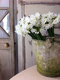interiorstyledesign:  White narcissus enchanted-barnowlkloof:  Jo flowers