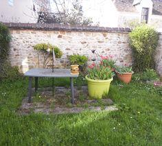 Les tulipes au jardin