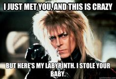 i just met you and this is crazy but heres my labyrinth i stole your baby