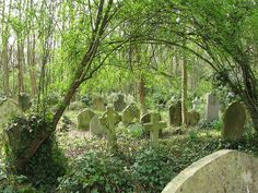 Highgate Cemetery - Victorian era cemetery in London. No longer used and maintained by volunteers only.