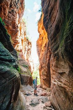 Looking to find some solitude in one of the most popular US National Parks? Check out these 4 hikes in Zion, where we discovered iconic views without the crowds. It's a fun Utah travel experience.