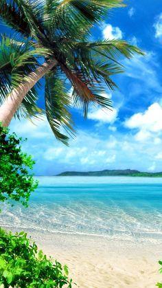 Tropical beach wallpaper hd island paradise live aloha o in . Paradise Wallpaper, Beach Wallpaper, Mobile Wallpaper, Tree Wallpaper, Beach Pictures, Nature Pictures, Iphone Wallpaper Tropical, Beach Photography, Nature Photography
