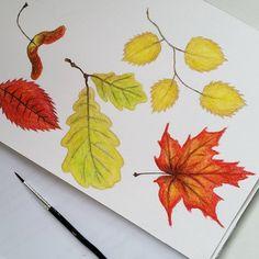 #flowleaf2015 #fall #autumn #automne #leaves #feuilles #feuillesmortes #aquarelle #watercolor