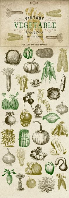 Vintage Vegetable Garden Graphics - Objects