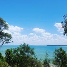 Reposting @australia_nature_tours: Beautiful day to take the dogs for a walk along the beach 🌴🦀🐳🐶 . . #visitaustralia #australianaturetours #nature #explore #adventure #summer #wonderlust #wildlife #getoutdoors #summer #wild #roadtrip #campinglife #hiking #camping #herveybay #adventure #travellingwithkids #lifeisbetteroutside #naturephotography #weekendvibes #discover #travelandlife #beach #whalewatching