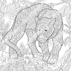 Animals and Birds Panther Coloring