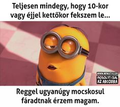 Motivational Quotes, Funny Quotes, True Stories, Minions, Jokes, Scrapbook, Text Posts, Funny Phrases, The Minions