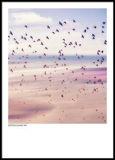 Cotton candy sky, plakat i gruppen Plakater hos Desenio AB (8397)