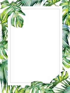 Watercolor illustration of tropical leaves, dense jungle. Banner with tropic summertime motif may be used as wedding or greeting card. Holyday or birthday greeting Tropical Background, Leaf Background, Motif Tropical, Tropical Leaves, Leaves Wallpaper Iphone, Fond Design, Wedding Party Invites, Instagram Frame, Birthday Invitation Templates
