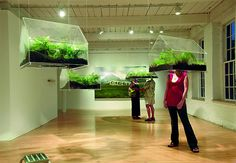 "Stick your head in a box full of plants!    Read more: Environmental Art at Swarm Gallery, San Francisco | Inhabitat - Sustainable Design Innovation, Eco Architecture, Green Building. ""WAW... oxygen?!"""
