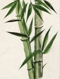 Image result for painting of bamboo tree
