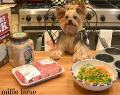 I'm helping Mummy make the dinner for us pups!  We LOVE our homemade doggie dinners!!!