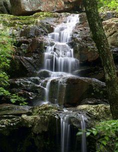 E Falls, Mark Twain National Forest, Missouri; photo by Marty Koch