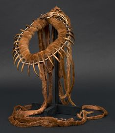 Plains Indian necklace, grizzly bear claws and otter fur, 1800s.