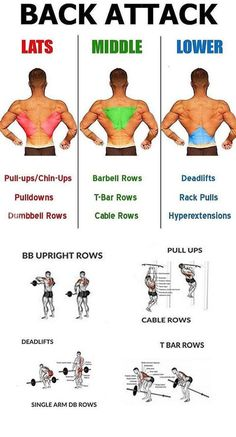 Fitness workouts back bodybuilding 68 Ideas Fitness Hacks, Fitness Workouts, Weight Training Workouts, Fun Workouts, At Home Workouts, Fitness Motivation, Health Fitness, Body Workouts, Back Exercises Gym