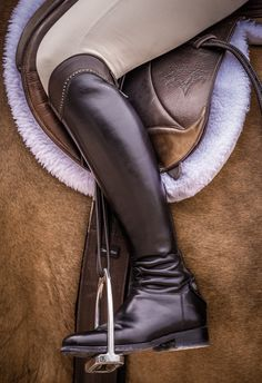 Made to measure riding boots by Alberto Fasciani
