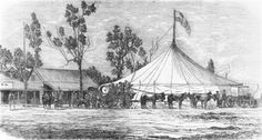 Australia has a long circus tradition. From circus was one of Australia's favourite forms of entertainment. Because of the great distances between towns, travelling circuses were one of the few forms of entertainment that reached every Australian. Horse Posters, Circus Circus, Big Top, Google Images, Travelling, Carnival, Folk, Elephant, Entertainment