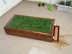 Indoor grass box for our dog!