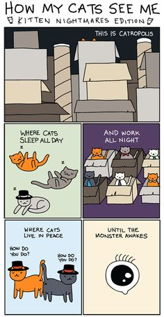 How my cats see me: Kitten Nightmares Edition  (Click on the link for seeing the rest of the story).