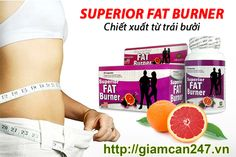 What Is The Average Weight Loss Per Week After Gastric Sleeve