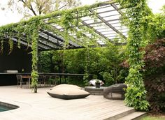 wall of greenery with hanging vines and a metal pergola. love the modern feel.