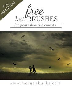 Download these Free Spooky Bat Brushes for Photoshop and Elements! | Find more free products and tutorials for photographers at www.morganburks.com