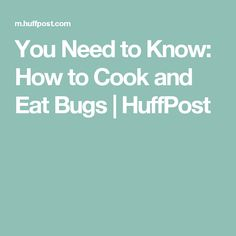 You Need to Know: How to Cook and Eat Bugs | HuffPost