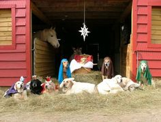 hahahahahahaha...too funny....Nativity Scene with labs!