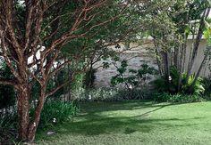 A parede de pedras madeira esconde a área de serviço desta casa no morumbi, em São Paulo. Visto da varanda, o jardim aberto revela até mesmo o que deveria ficar oculto. Foiapartir disso que os paisagistas Caterina Poli e Sergio Menon, da Grama & Flor, resolveram dispor a parede de maneira que pudesse interagir com o verde. entre as plantas, aparecem jabuticabeira (1), agapantos (2), dianela (3) e lichieira (4), além de uma touceira de arecas-bambu (5). embora não ganhe mais importância do…