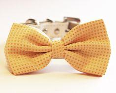 #Custard Dog Bow Tie, Cute Dog Bowtie- with high quality white leather collar, wedding dog accessory
