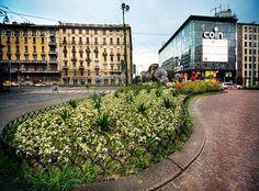 Da piazza V giornate  Foto di Franco Brandazzi #milanodavedere Milano da Vedere