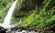 5 Air Terjun Atau Curug Di Bogor Paling Indah