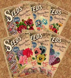ALTERED ARTIFACTS: Ephemera: free printable vintage seed packets--click through to go to the website and download.