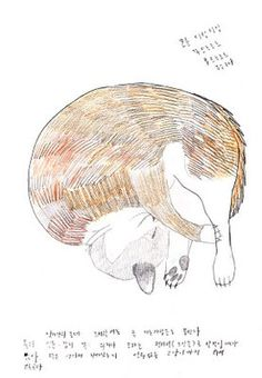 Ginger cat - Jung Eun Park, my new favourite Illustrator!
