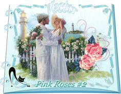 Design Wilds Cat: Vector Pink Roses Collection #2 - 50 Ai Розовые ро...