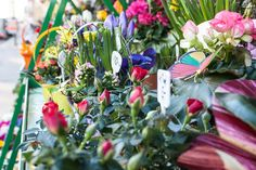 Blumen Claudia   Stadtbekannt Wien   Das Wiener Online Magazin Austria, Shops, Plants, Valentines Flowers, Tents, Retail, Flora, Plant, Retail Stores