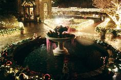 Light Up the Holidays with The Elizabethan Gardens   Outer Banks This Week