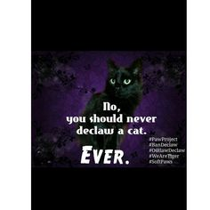 Never declaw