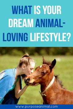Have you ever thought about what your dream animal lifestyle looks like?  Have you ever really taken the time to think about what your dream (animal loving) lifestyle looks like? I mean really thought about it? Not just a fleeting thought, but a really deep look into how you would live. If money was NOT an issue, how would you be living? What would your day be like? What would your week be like? What would your month be like? What would your year be like? What does your dream life look like?…