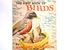 The First Book of Birds a Vintage 1950s by lizandjaybooksnmore
