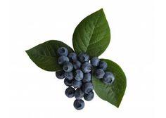 Blueberries - #Superfoods