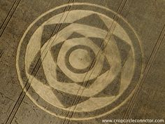 Harewell Lane Crop Circle (08-12-2013) *** Formed on Harewell Lane near Besford Worcestershire in the United Kingdom *** More info here: http://www.cropcircleconnector.com/2013/harewell/harewell2013a.html