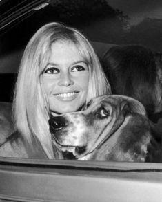 Photo of Brigitte Bardot for fans of Brigitte Bardot.
