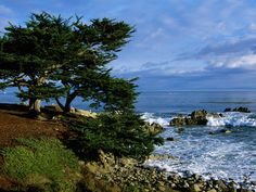 pacific+grove+california+images | Pacific Grove California postcard, Pacific Grove California wallpaper ...